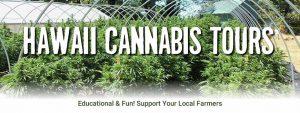 Hawaii Cannabis Tours